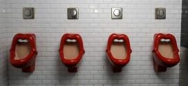 Най-откачените тоалетни от света (снимки)